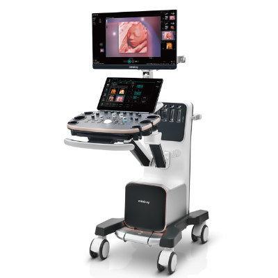 OB/GYN Diagnostic Ultrasound System