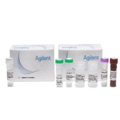 SARS-CoV-2 qRT-PCR IVD Reagent Kit