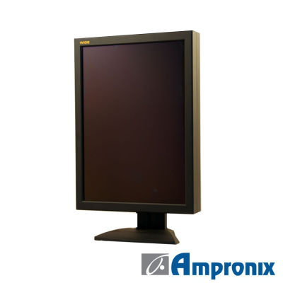 Display Monitor