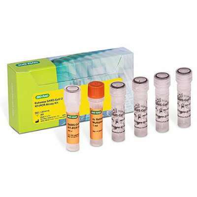 SARS-CoV-2 RT-PCR Assay